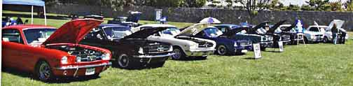 Lineup of Stangs at LASAAC (L.A. Shelby American Auto Club) Woodley Park show, 1999. Photo by Curt Scott
