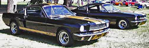 Gold & black Hertz GT350s at LASAAC Woodley Park show, 1999