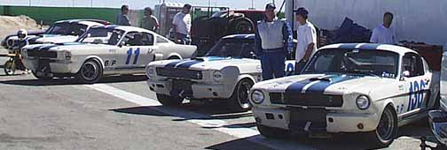 Maeco GT 350 Line Up
